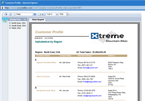 ReCrystallize Pro Web Wizard for Crystal Reports by