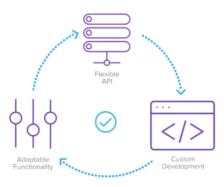 Integration Platform & Development Services