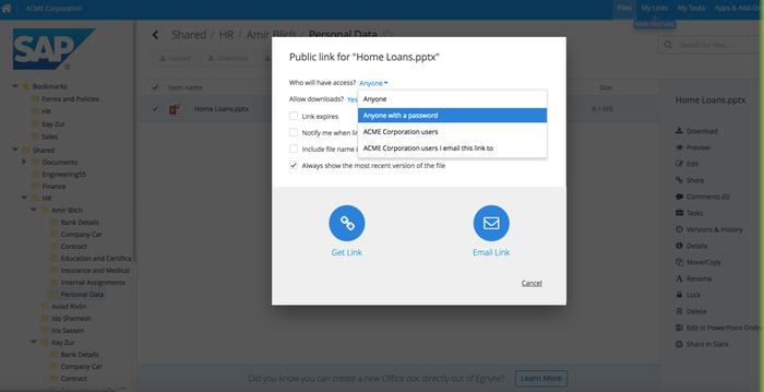 Egnyte Connect for SAP Cloud Platform by Egnyte | SAP App Center