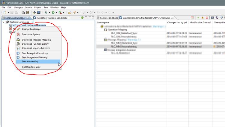 Realcore Developer Suite for SAP Process Integration